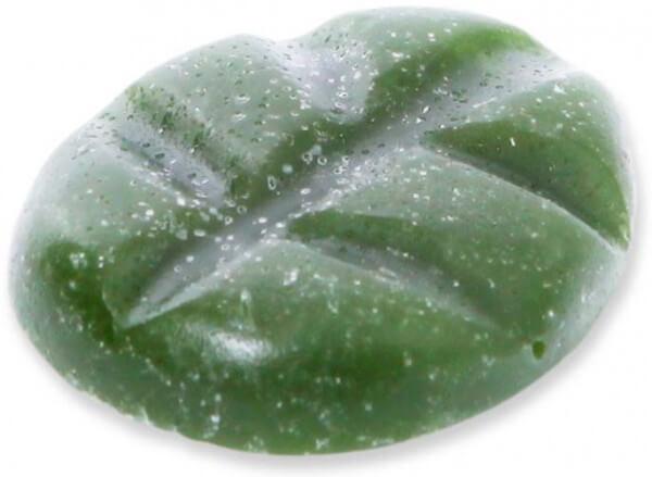 Scentchips - Duftwachs - Duftplättchen - Wachschips - Wachsblätter ~ Bayberry ~
